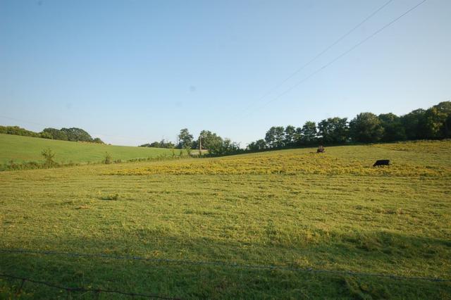 4445 Buchanan Ln, Franklin, TN 37064 (MLS #RTC1985248) :: Village Real Estate