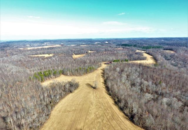 0 Smith Hollow Rd, Mount Pleasant, TN 38474 (MLS #RTC1985587) :: Village Real Estate