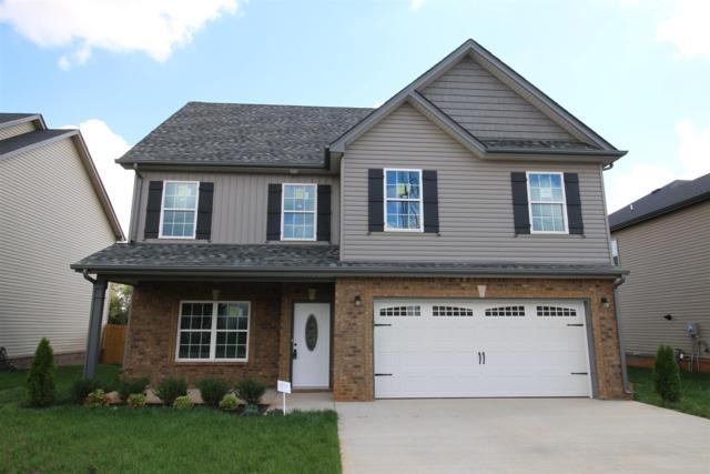 144 Summerfield, Clarksville, TN 37040 (MLS #1986130) :: EXIT Realty Bob Lamb & Associates