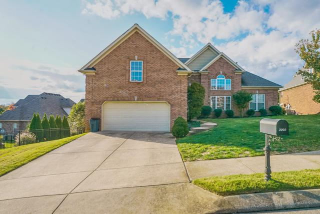 2003 Crye Crest Cv, Spring Hill, TN 37174 (MLS #1986144) :: CityLiving Group