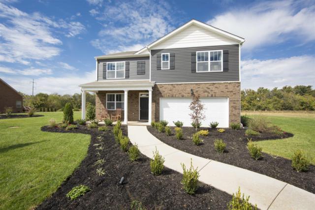 252 Autumn Terrace Ln- Lot 167, Clarksville, TN 37040 (MLS #1986241) :: REMAX Elite