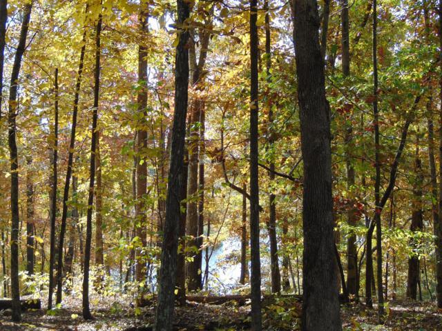 0 Pine Lake, Summertown, TN 38483 (MLS #RTC1986522) :: REMAX Elite
