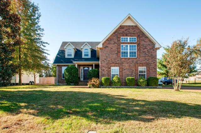 117 Audubon Ln, Hendersonville, TN 37075 (MLS #1986588) :: The Kelton Group