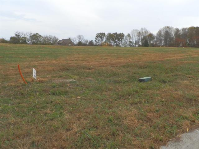 17 Meadowland (Lot 17), Adams, TN 37010 (MLS #1987437) :: Hannah Price Team
