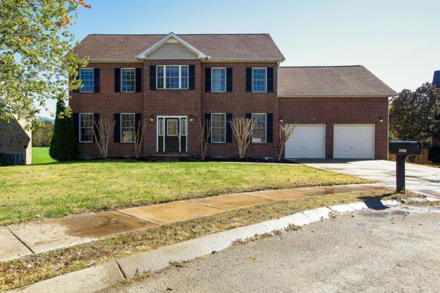 1608 Solitude Ct, Spring Hill, TN 37174 (MLS #1987536) :: REMAX Elite