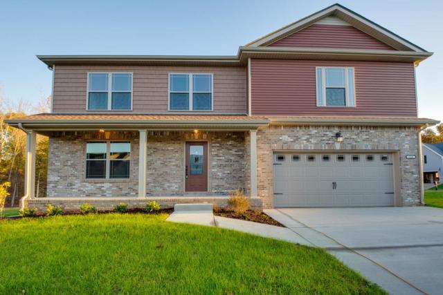 224 Towes Ln, Clarksville, TN 37043 (MLS #1987571) :: John Jones Real Estate LLC