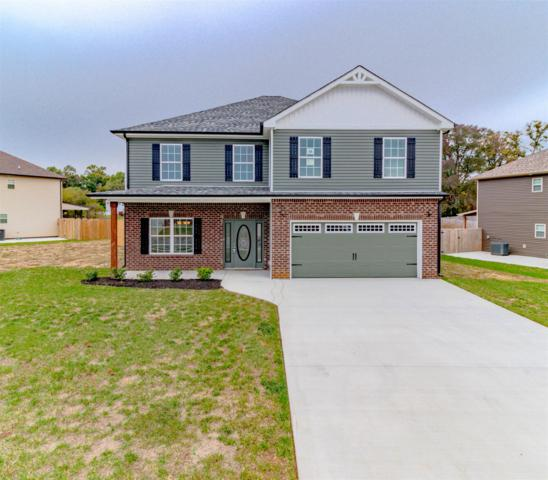 2411 Andersonville Dr, Clarksville, TN 37042 (MLS #1987594) :: RE/MAX Choice Properties