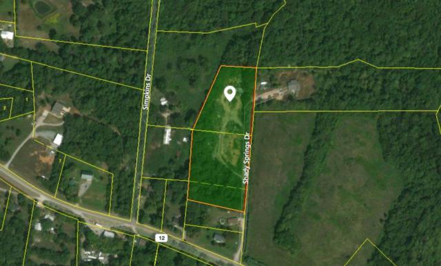 150 Shady Springs Drive, Chapmansboro, TN 37035 (MLS #RTC1987970) :: Team Wilson Real Estate Partners