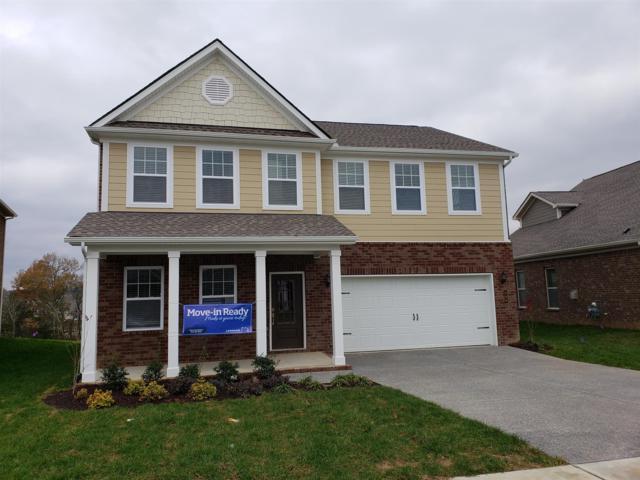 369 Black Thorn Lane #207, Gallatin, TN 37066 (MLS #1988161) :: Ashley Claire Real Estate - Benchmark Realty