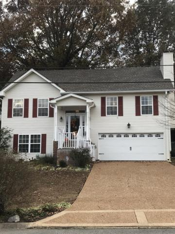 216 Apache Trl, White House, TN 37188 (MLS #1988339) :: Hannah Price Team