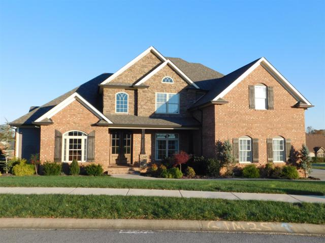 1480 Collins View Way, Clarksville, TN 37043 (MLS #1988365) :: Clarksville Real Estate Inc