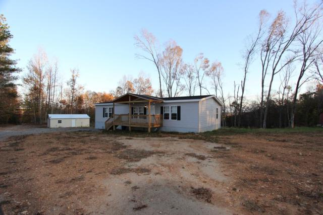 182 River Rd, Dover, TN 37058 (MLS #1988614) :: Clarksville Real Estate Inc