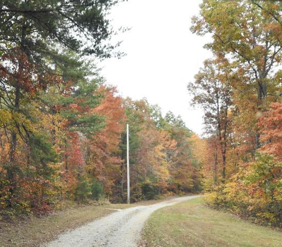 102 Hemlock Trail, Graysville, TN 37338 (MLS #1989038) :: The Kelton Group