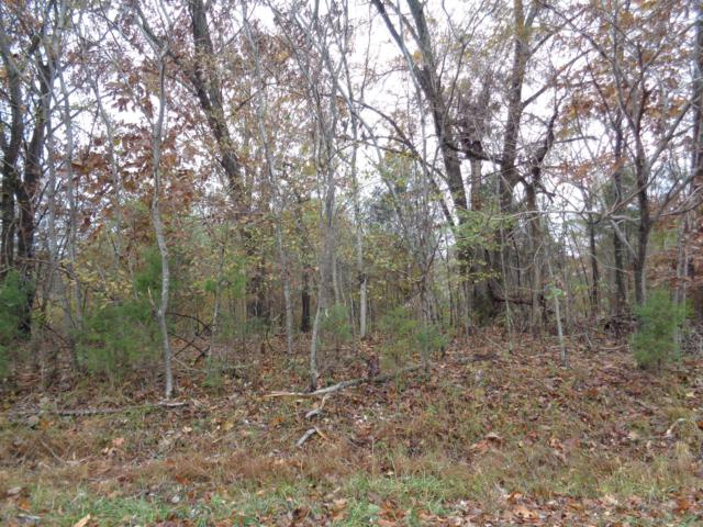 1 Huffman Park Lots 82/83, Lynchburg, TN 37352 (MLS #1989129) :: John Jones Real Estate LLC