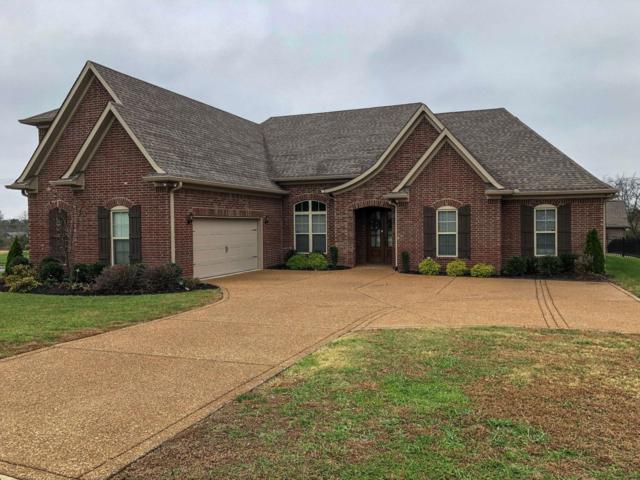 234 Carellton Dr, Gallatin, TN 37066 (MLS #1989547) :: Berkshire Hathaway HomeServices Woodmont Realty