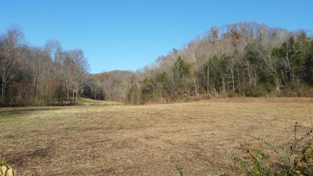 153 Big Creek Rd, Pleasant Shade, TN 37145 (MLS #1991193) :: John Jones Real Estate LLC