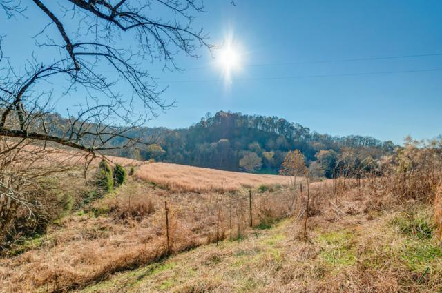 4443 Hampshire Pike, Hampshire, TN 38461 (MLS #1992425) :: CityLiving Group