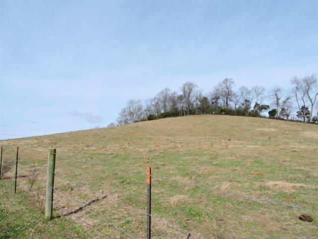 8 Hwy 64, Beechgrove, TN 37018 (MLS #1993806) :: Maples Realty and Auction Co.