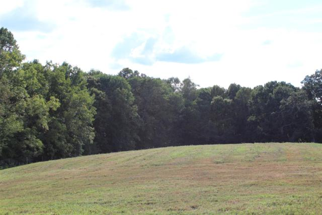 2 Hickory Point Rd (Lot 2), Clarksville, TN 37043 (MLS #1994299) :: The Kelton Group