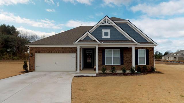 6320 Paper Bark Ct, Murfreesboro, TN 37128 (MLS #1994490) :: John Jones Real Estate LLC
