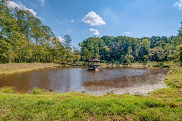 0 Highway 47, Burns, TN 37029 (MLS #1994599) :: Black Lion Realty