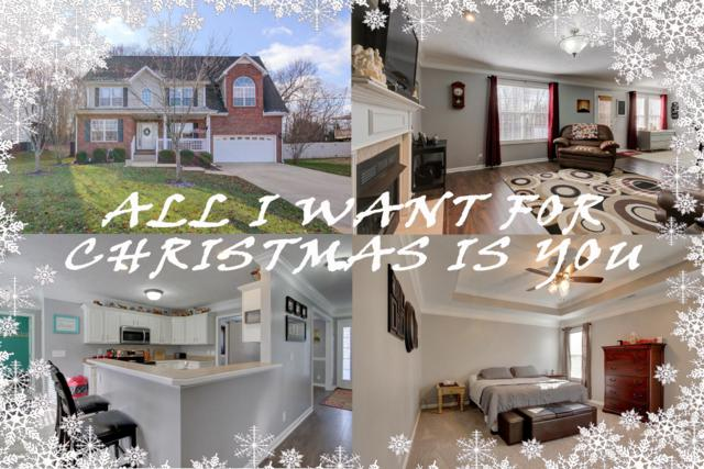 462 Winding Bluff Way, Clarksville, TN 37040 (MLS #1994631) :: John Jones Real Estate LLC