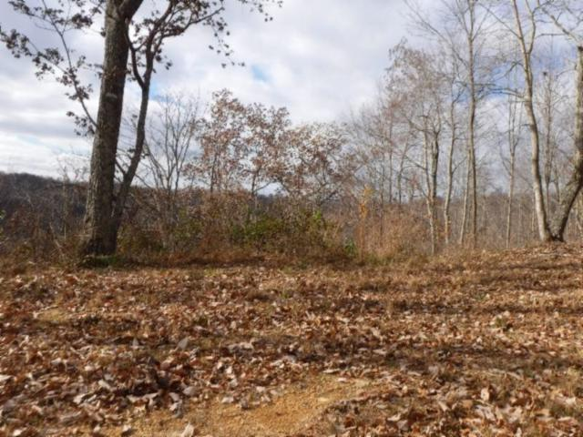 24 .36Ac Casey Cove Road, Smithville, TN 37166 (MLS #1994696) :: Nashville on the Move