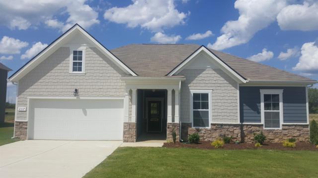 207 Princeton Drive Lot 45, Lebanon, TN 37087 (MLS #1994936) :: The Helton Real Estate Group