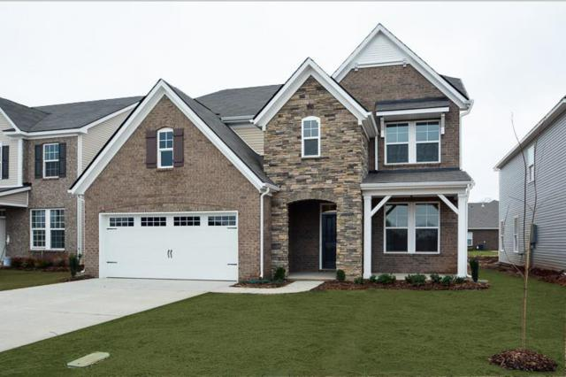 3244 Calendula Way (Lot 130), Murfreesboro, TN 37128 (MLS #1994953) :: Clarksville Real Estate Inc