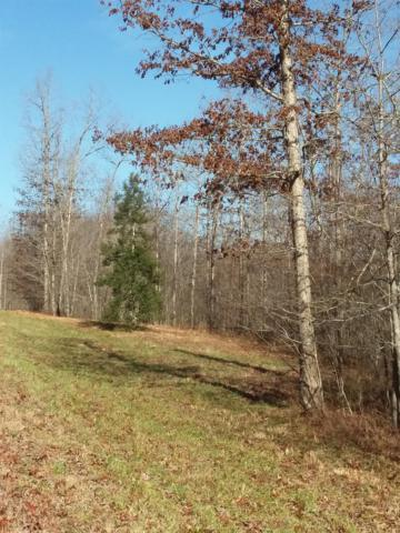 0 Holly Ln - Lot 91A, Spencer, TN 38585 (MLS #1995250) :: RE/MAX Homes And Estates