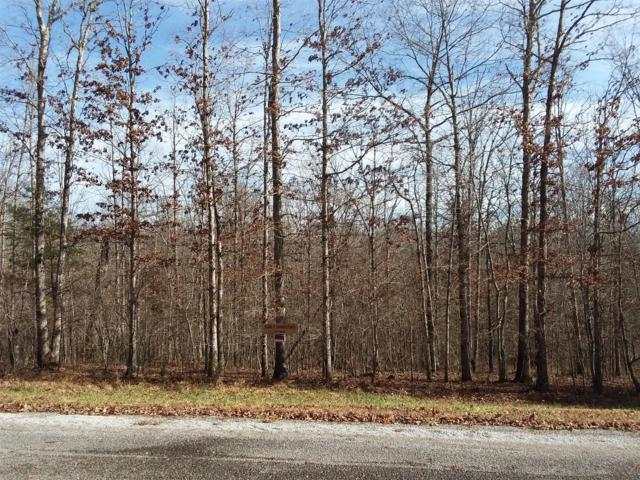 0 Holly Ln - Lot 91B, Spencer, TN 38585 (MLS #1995257) :: RE/MAX Homes And Estates