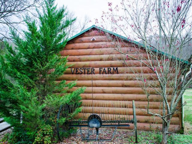 4176 Vester Road, Whites Creek, TN 37189 (MLS #1995386) :: REMAX Elite