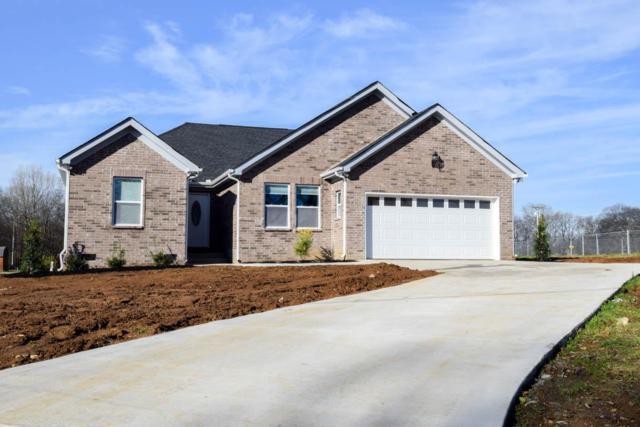 1325 Brummitt Rd, Castalian Springs, TN 37031 (MLS #1995591) :: RE/MAX Choice Properties