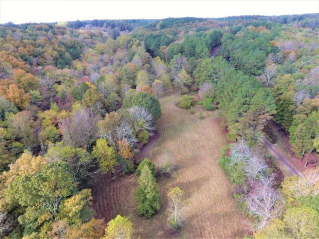 740 Little Shawnette Rd, Collinwood, TN 38450 (MLS #1995835) :: The Kelton Group