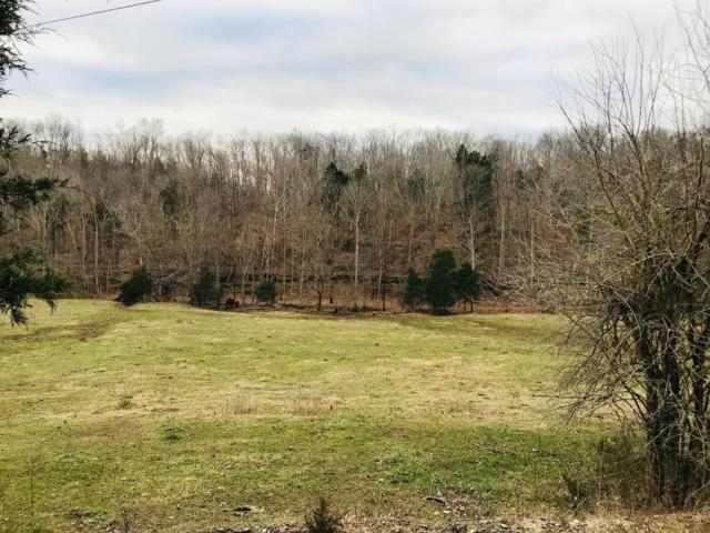0 Duffer Hollow Rd, Bethpage, TN 37022 (MLS #1996449) :: RE/MAX Homes And Estates