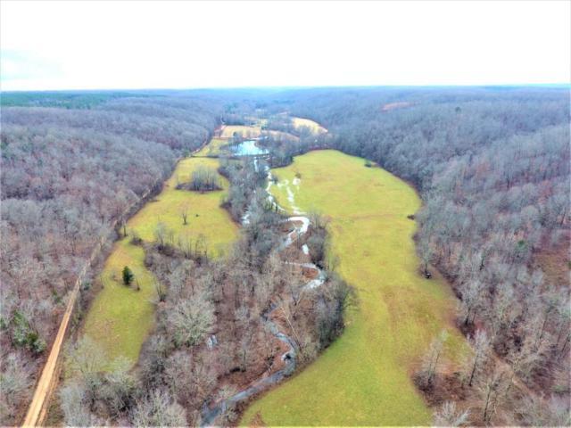 0 Blue Buck Creek Rd, Duck River, TN 38454 (MLS #1996557) :: HALO Realty