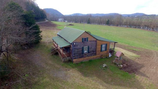 324 Free Hill River Rd, Celina, TN 38551 (MLS #1996598) :: Team Wilson Real Estate Partners