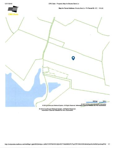 2607 Brooks Bend Ln, Gainesboro, TN 38562 (MLS #1996805) :: CityLiving Group