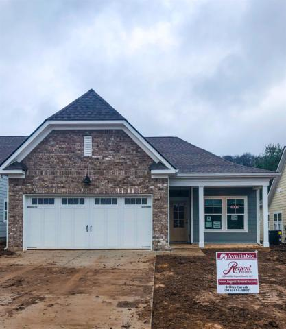 232 Mary Ann Circle, Spring Hill, TN 37174 (MLS #1997904) :: Exit Realty Music City