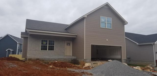 241 Eagles Bluff, Clarksville, TN 37040 (MLS #1998165) :: DeSelms Real Estate