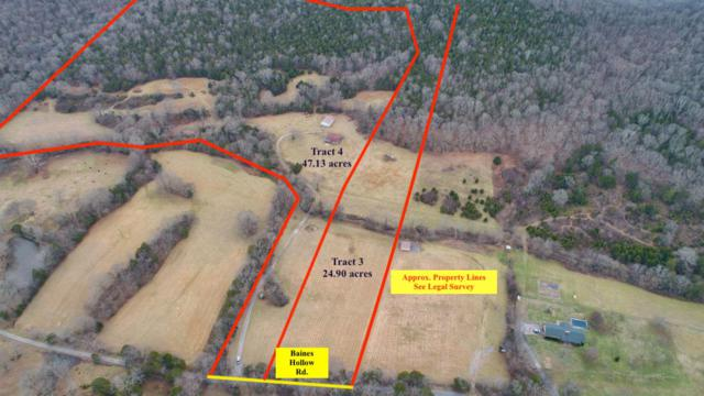 0 Baines Hollow Rd, Auburntown, TN 37016 (MLS #2000082) :: Maples Realty and Auction Co.
