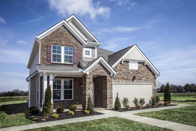 3212 Calendula Way ( Lot 138), Murfreesboro, TN 37128 (MLS #2000908) :: The Milam Group at Fridrich & Clark Realty