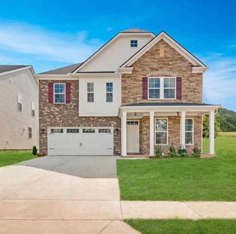 3216 Calendula Way ( Lot 137), Murfreesboro, TN 37128 (MLS #2001113) :: The Milam Group at Fridrich & Clark Realty