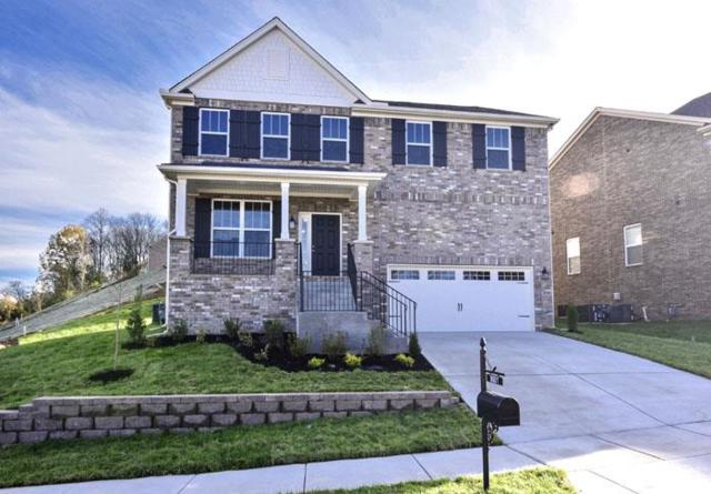 8501 Beautiful Valley Drive, Nashville, TN 37221 (MLS #2001420) :: Exit Realty Music City