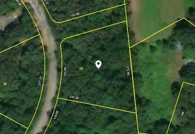 2413 Summer Oaks Cir, Mount Pleasant, TN 38474 (MLS #2003029) :: John Jones Real Estate LLC