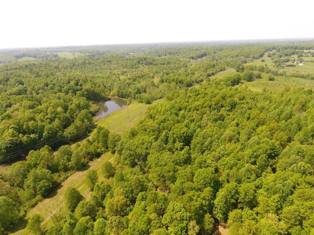 1 S. Tunnel Rd., Gallatin, TN 37066 (MLS #2004076) :: Berkshire Hathaway HomeServices Woodmont Realty