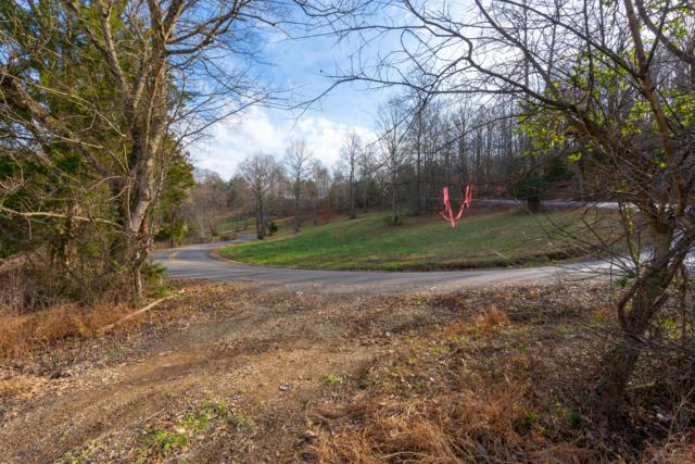 377 Red Tuttle Rd, Bethpage, TN 37022 (MLS #2004372) :: Keller Williams Realty