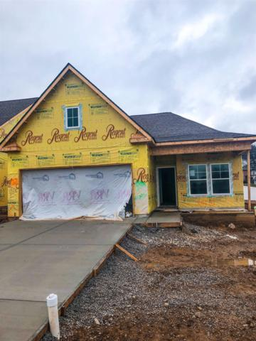 208 Mary Ann Circle, Spring Hill, TN 37174 (MLS #2004646) :: Clarksville Real Estate Inc