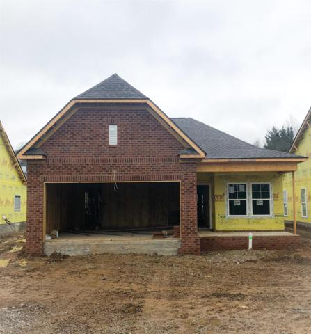 184 Mary Ann Circle, Spring Hill, TN 37174 (MLS #2004647) :: Clarksville Real Estate Inc