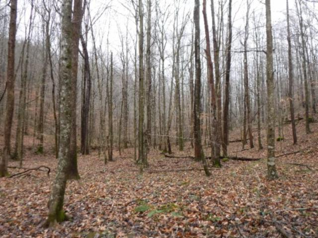 72 .71Ac Hinds Chapel Rd, Jamestown, TN 38556 (MLS #2004876) :: Fridrich & Clark Realty, LLC